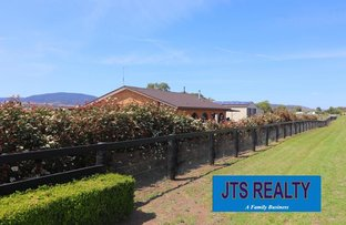 Picture of 1456 New England Highway, Aberdeen NSW 2336