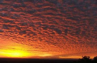 260 Mountain View Road, Moorina QLD 4506