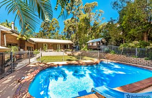 Picture of 1 Warrambeen Place, Mudgeeraba QLD 4213