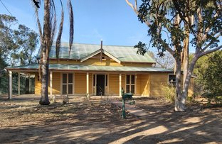 Picture of 30 Warrena Street, Coonamble NSW 2829