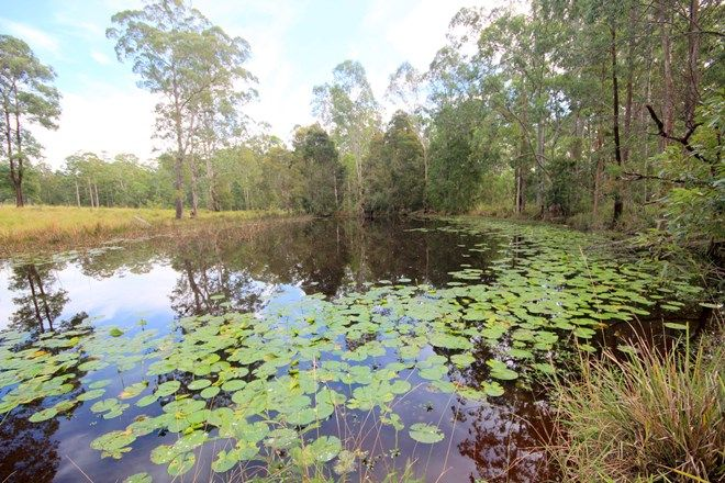 Picture of 98 Misty Ridge Road, BELLANGRY NSW 2446