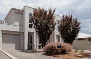 4A Kelmscott Street, Oaklands Park SA 5046