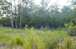 Picture of lot 11 Long Gully Road, Drake NSW 2469