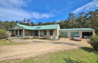 40 Florabunda Lane, Nethercote NSW 2549