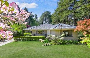 Picture of 24 Scott Avenue, Leura NSW 2780