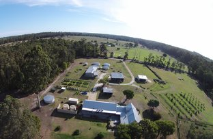 Picture of 64 Bill Jones Road (Crowea), Northcliffe WA 6262