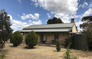 Picture of 163 Hills Road, Robertstown SA 5381
