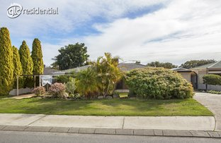 Picture of 36 Allamanda Drive, South Lake WA 6164