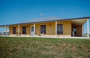 178 Riverside Drive, Narrabri NSW 2390