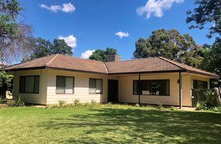Picture of 8 Macquarie Dr, Warren NSW 2824