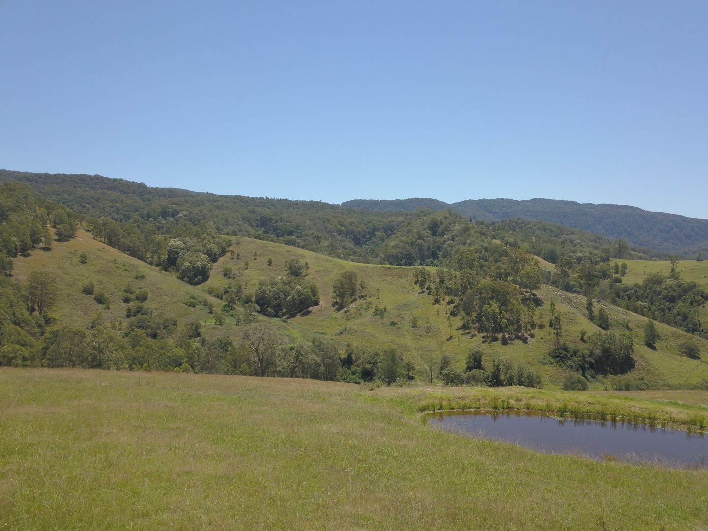 545 Masseys Creek Road, Eccleston Via, East Gresford NSW 2311, Image 0