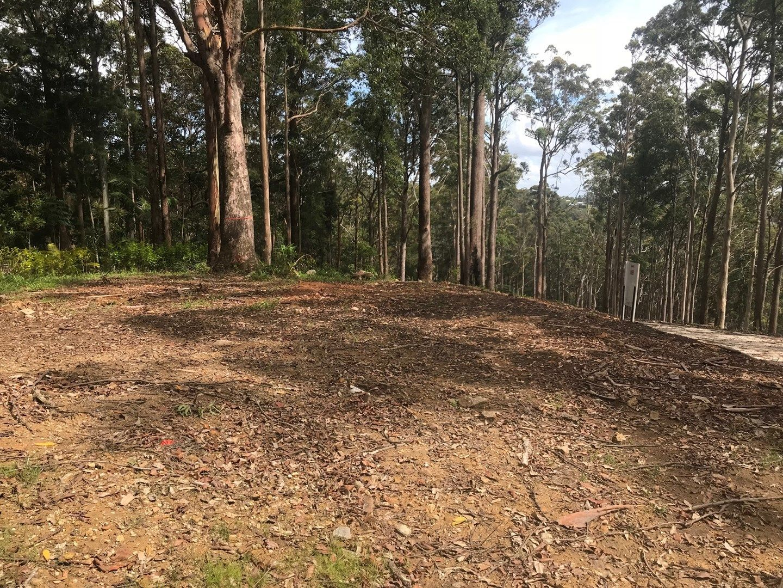 Lot 5, 106 Wongawallan Road, Tamborine Mountain QLD 4272, Image 1