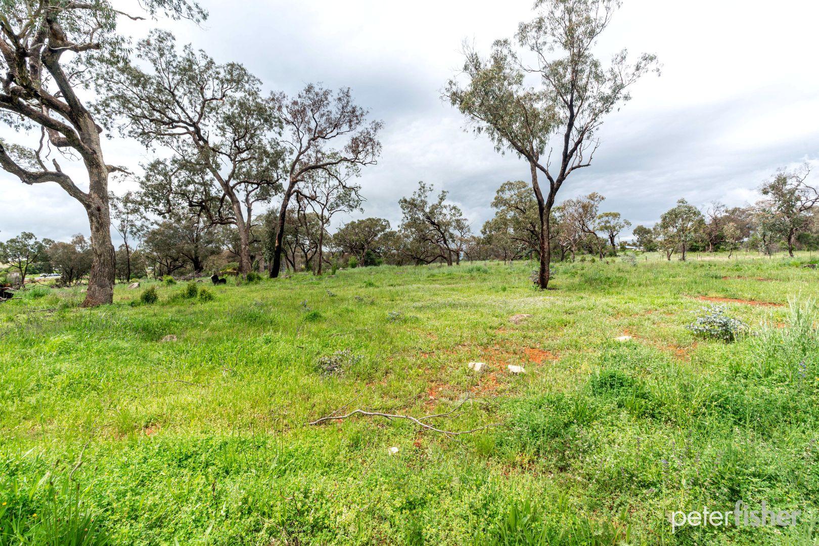1554 Peabody Road, Molong NSW 2866, Image 2