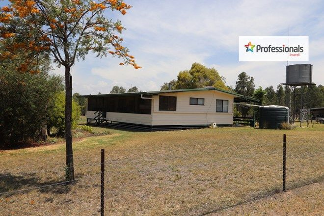 Picture of 1560 Holdfast Road, YETMAN NSW 2410