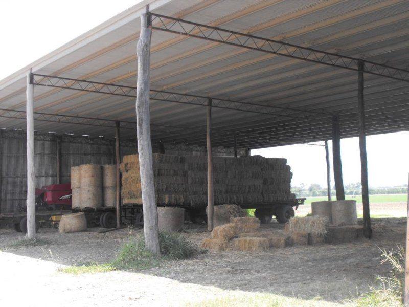 826 Wowan - Dululu Road, Dululu QLD 4702, Image 1