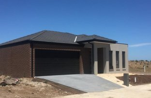 Picture of 65 Bliss Street, Point Cook VIC 3030