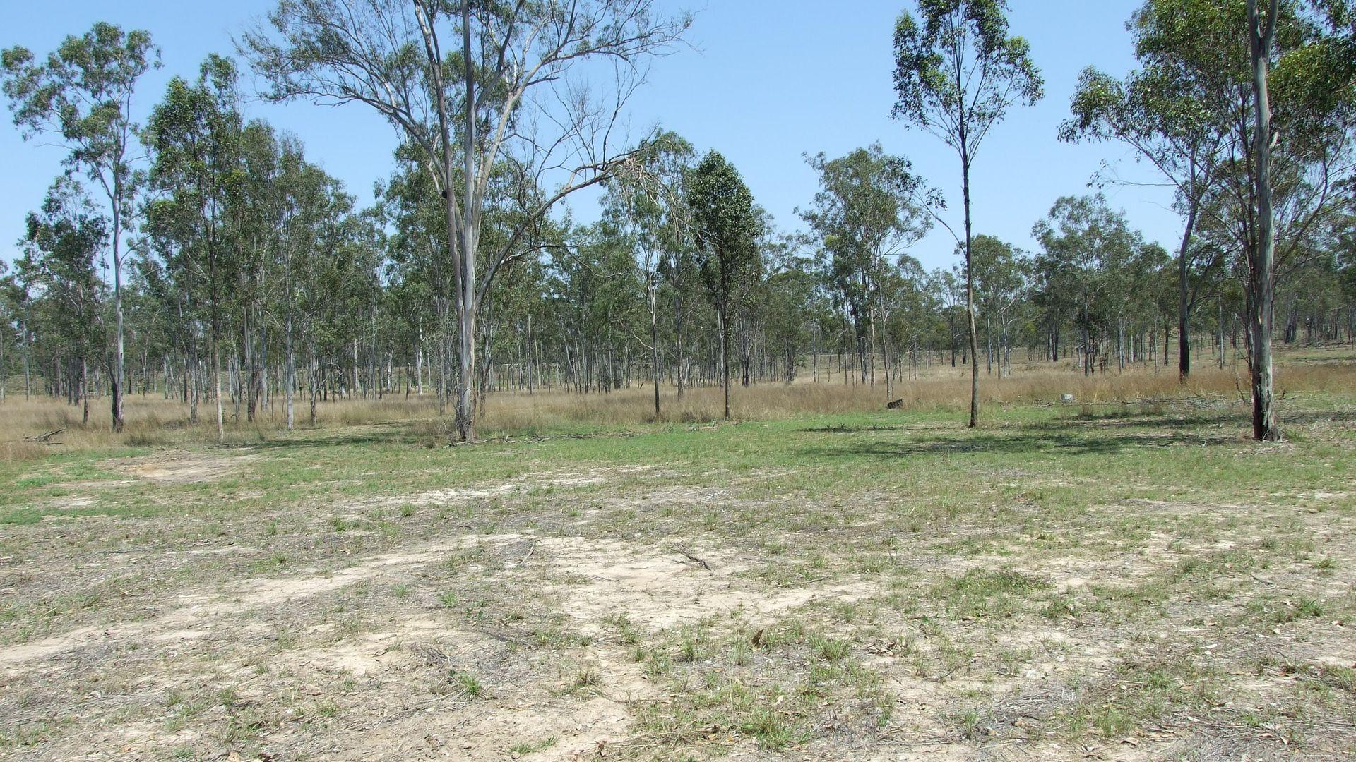 Proposed Lot Leferink Road, Benaraby QLD 4680, Image 1