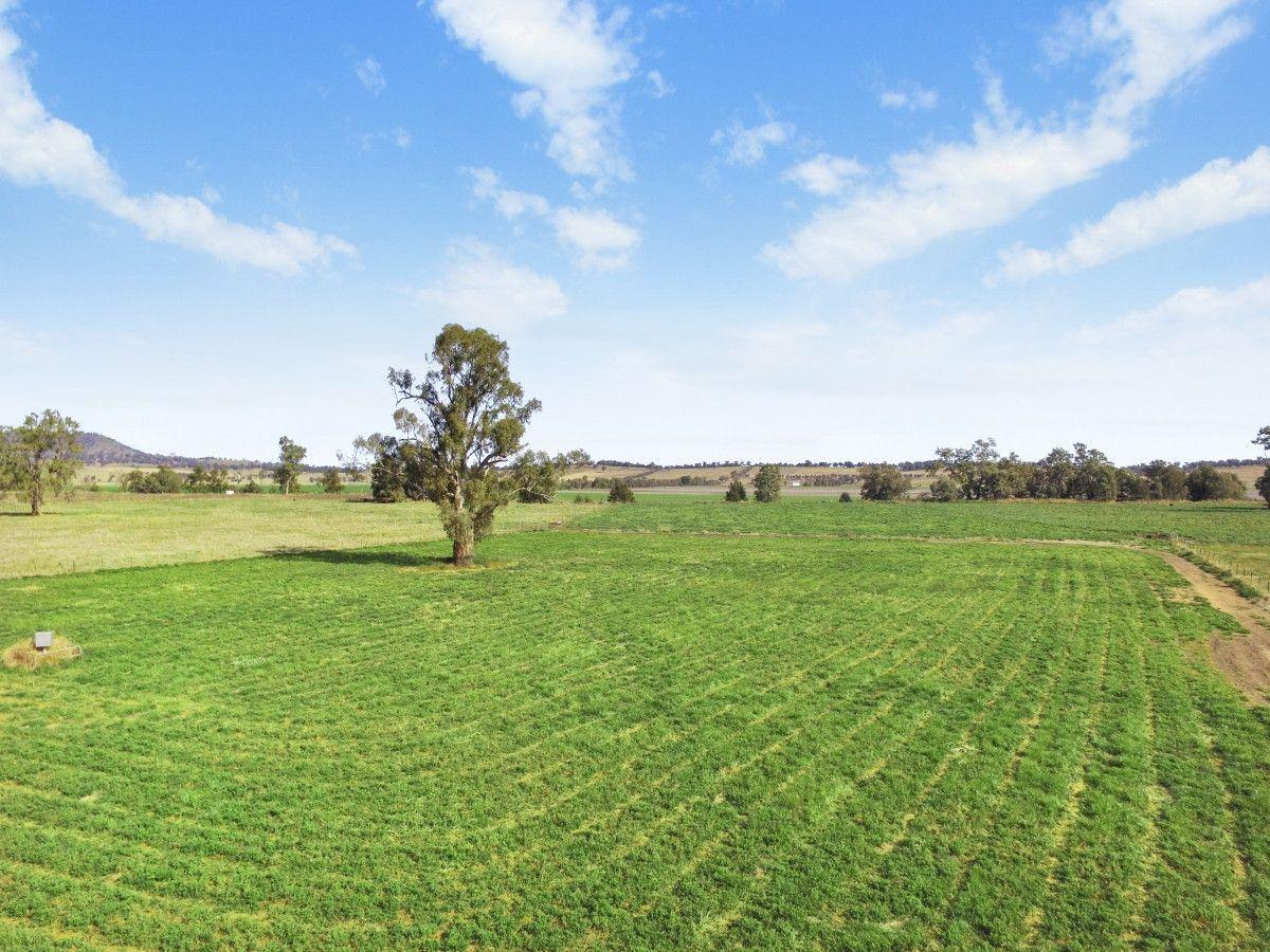 445 Spains Lane, Quirindi NSW 2343, Image 1