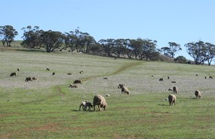 Picture of Beverley WA 6304