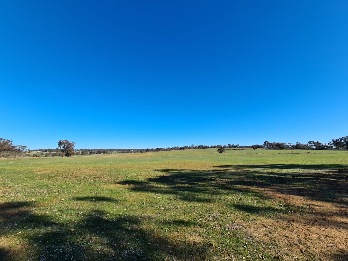 987 Warren  Road, Katanning WA 6317, Image 0