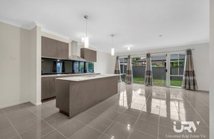 Picture of 17 Bottlebrush Road, Craigieburn VIC 3064