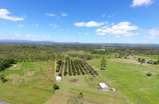 Picture of 371 Emerald End Road, Mareeba QLD 4880