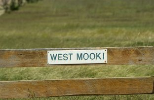 Picture of 'WEST MOOKI' 70 WILLIEWARINA RD, Caroona NSW 2343