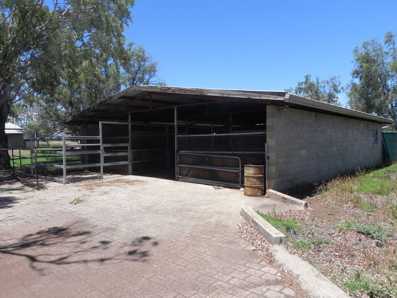520 Knust Road, Mount Tyson QLD 4356, Image 2