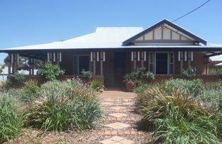 41 Mill St, Canowindra NSW 2804