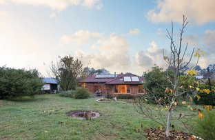 Picture of 24 Beenak East Road, Gembrook VIC 3783