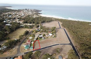 Picture of Lot 141 Manyana Drive, Manyana NSW 2539