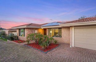 Picture of 46 Albemarle Street, Doubleview WA 6018