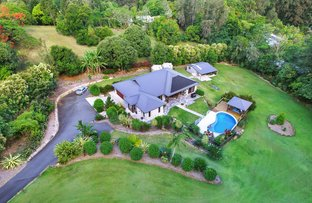 Picture of 468 Kiel Mountain Road, Diddillibah QLD 4559