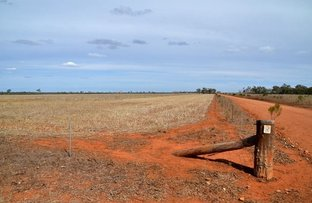 * Cable Downs, Cobar NSW 2835