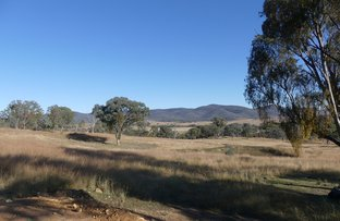 Picture of Lot 15 Saxby Road, Ballandean QLD 4382