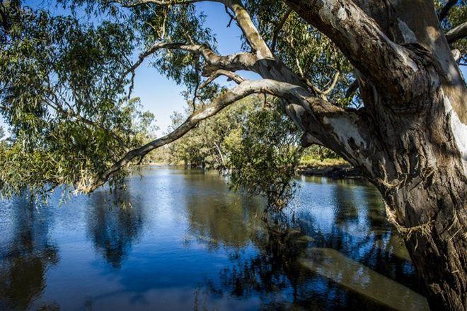 Picture of CONDOBOLIN NSW 2877