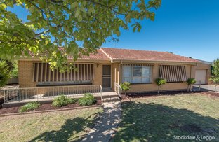Picture of 54 Wilmot Road, Shepparton VIC 3630