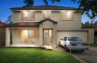 Picture of 10 Eungella Terrace, Forest Lake QLD 4078