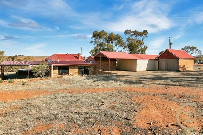 Picture of 79 Levi Road, DUTTON SA 5356