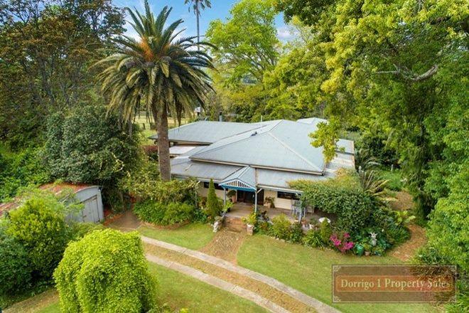 Picture of 15 Tamarind Avenue, DORRIGO NSW 2453