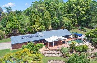 Picture of 22 Gladioli Avenue, Terranora NSW 2486