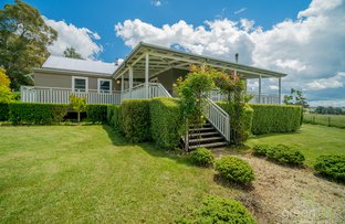 193 Toms Gully Road, Black Mountain NSW 2365
