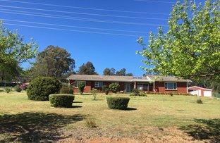 Picture of 171W Croudace Street, Walcha NSW 2354
