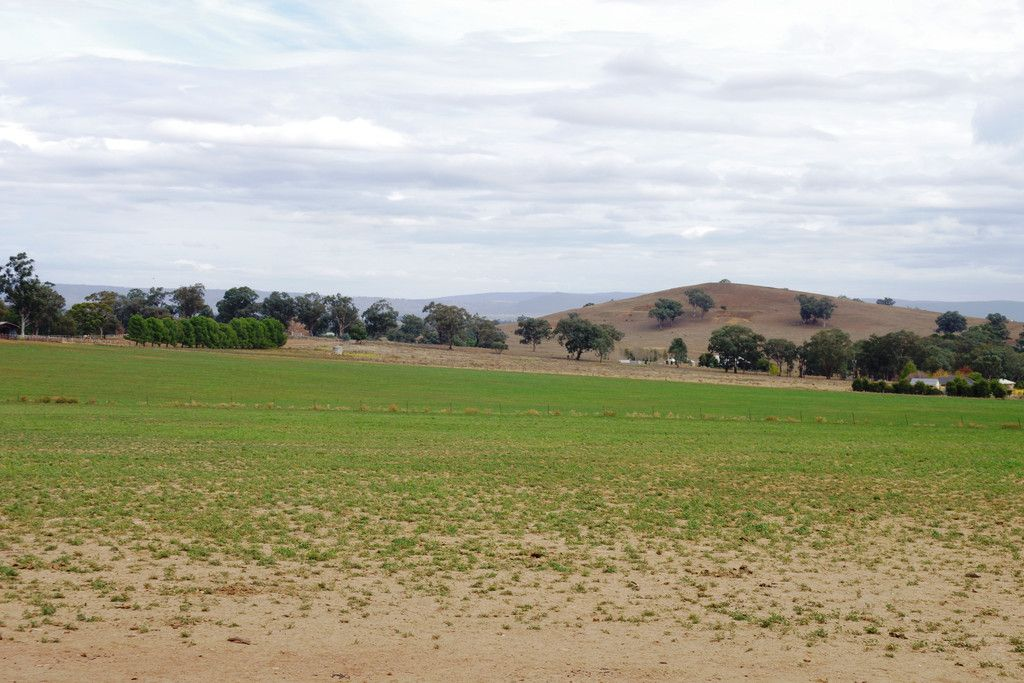 Lot 176 Porters Mount Road, Cowra NSW 2794, Image 0