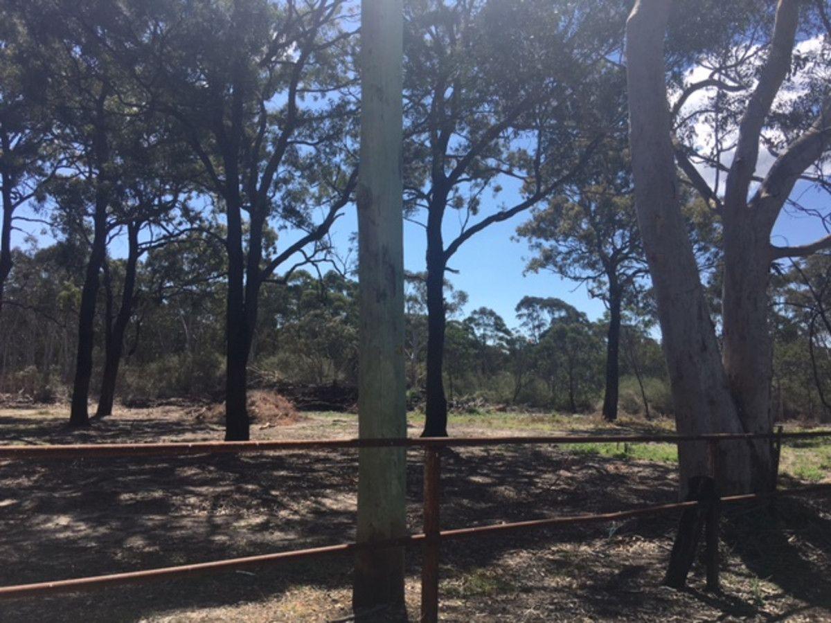 Gwynnehughes St., Bargo NSW 2574, Image 1