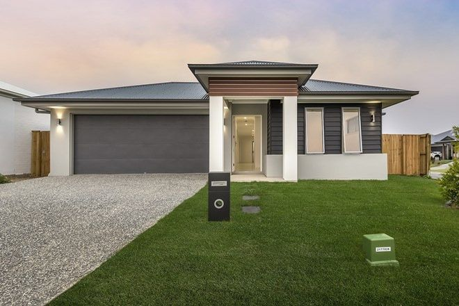Picture of 20 Kerang Street, COOMERA QLD 4209