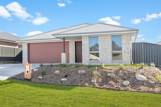 Picture of 158 Radford Street, CLIFTLEIGH NSW 2321