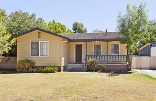 Picture of 13 Jacaranda Street, West Albury NSW 2640