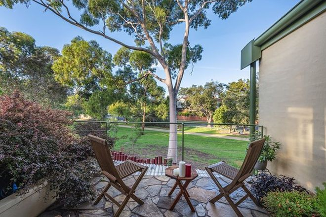 Picture of 534A Neerim Road, MURRUMBEENA VIC 3163