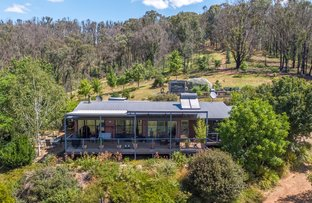 Picture of 3852 Jingellic Rd, Lankeys Creek NSW 2644